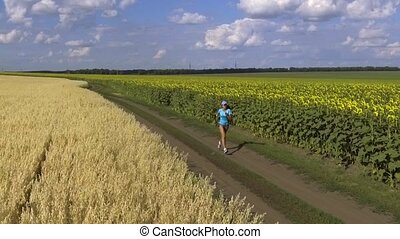 woman running in the blooming sunflowers field. slow motion...