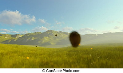 Woman running on green meadow, morning