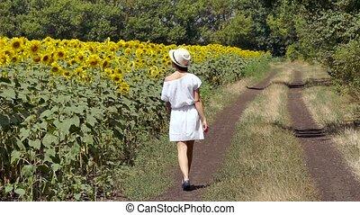 woman runs across the road near a field of sunflowers -...