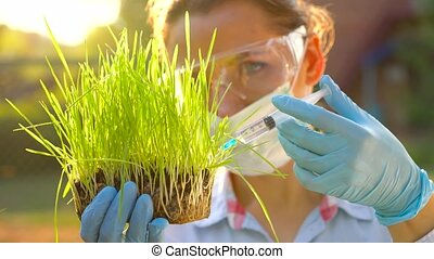Woman scientist in safety goggles and a mask examines a sample of soil and plants