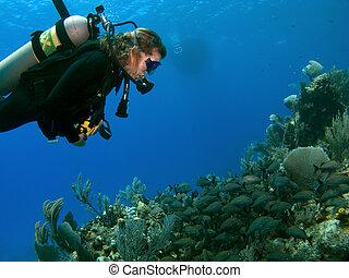 Woman Scuba Diver looking at A School of Fish