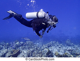 woman scuba diver on a tropical coral reef