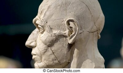Woman sculptor at work on a sculpture of a human head. The process of restoring the shape of the neck. Side view. Close up view.