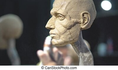 Woman sculptor at work on a sculpture of a human head. The process of restoring the shape of the portrait. Side view. Close up view.