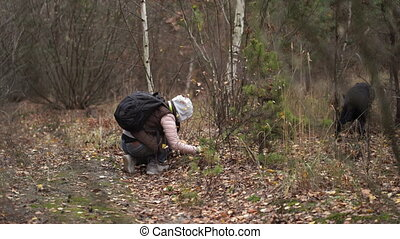 Woman Searching For Something On The Ground In The Forest