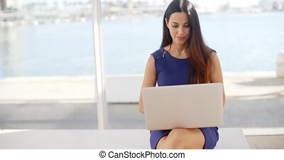 Woman sitting on a waterfront bench using a laptop -...