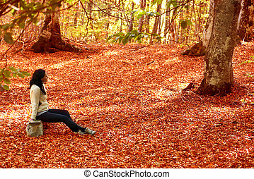 Woman sitting on the bench in autumn forest