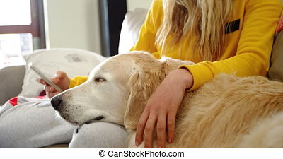 Woman sitting on the sofa with her dog and using mobile phone 4k