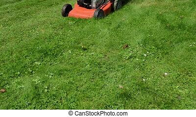 woman skirt mow lawn