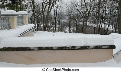 woman slope roof snow