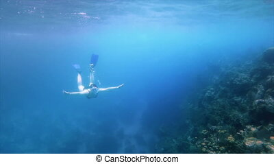 Woman snorkelling along a reef system. 240fps