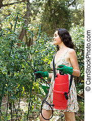 Woman spraying tomato