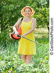 woman spraying vegetables plant