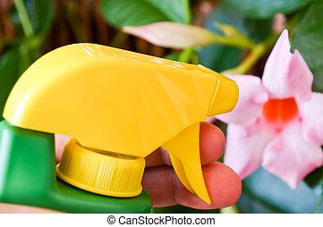 woman sprinkling water on pink flower