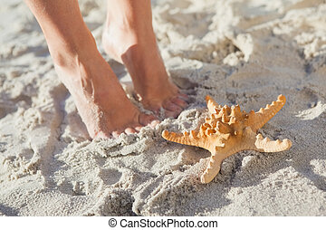 Woman standing beside starfish on t