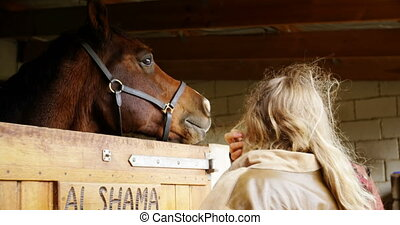 Woman standing near horse in the stable 4k - Rear view of...