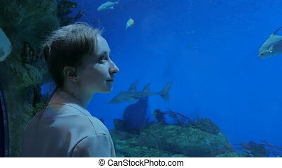 Woman stay near big aquarium tank, watching the fish