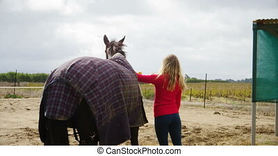 Woman stroking a horse in ranch 4k - Rear view of woman...