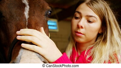 Woman stroking a horse in stable 4k - Close-up of woman...