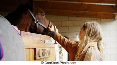 Woman stroking a horse in stable 4k - Side view of woman...