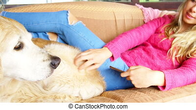 Woman stroking her dog while using digital tablet on sofa 4k...