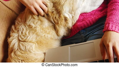 Woman stroking her dog while using laptop on sofa 4k - Woman...