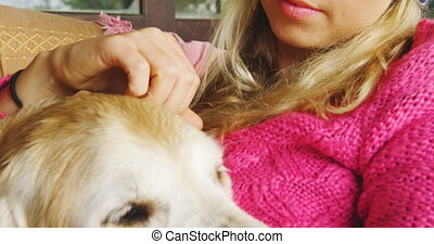 Woman stroking her dog while using laptop on sofa at home 4k...