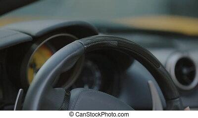 Woman stroking steering wheel of the car