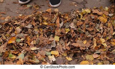 Woman sweeping leaves