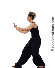 woman tai chi chuan tadjiquan posture pose position