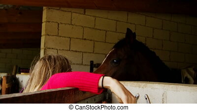 Woman taking horse rein in stable 4k - Rear view of woman...