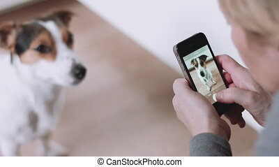 Woman taking picture of dog - Woman in grey sweater taking...