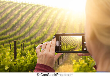Woman Taking Pictures of A Grape Vineyard with Her Smart Phone