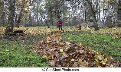 woman tidying leaves in garden backyard. Zoom in. 4K