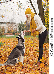 Woman training dog husky outdoors in the autumn park