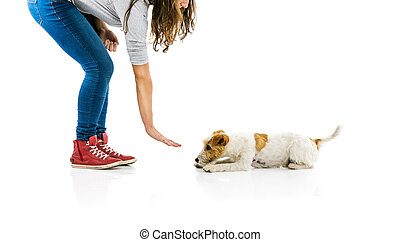 Woman training dog isolated - Young woman training cute ...