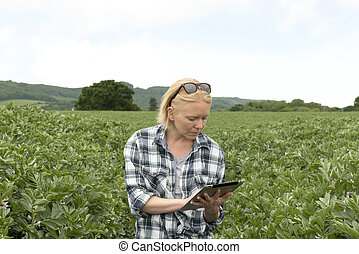Woman Using Her Tablet Computer in an Outdoor Plantation