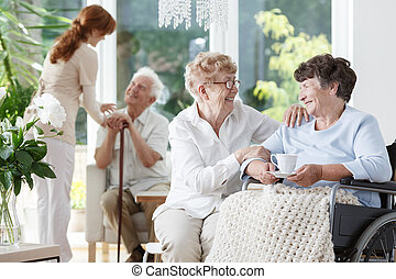 Woman visiting her friend - Elder woman in glasses visiting...