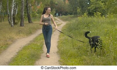 Woman volunteer walking with a dog on a forest road. She caress the dog. Volunteering and helping concept. Steadicam shot