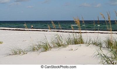 Woman Walking Alone On Beach - Woman walks alone on the...