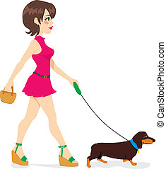 Woman Walking Dachshund - Beautiful sexy woman walking with...
