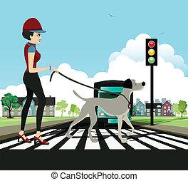 Woman walking dog - Woman and dog walking across the...