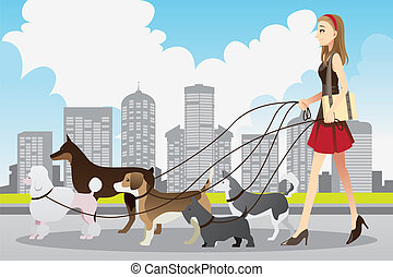 Woman walking dogs - A vector illustration of a beautiful ...