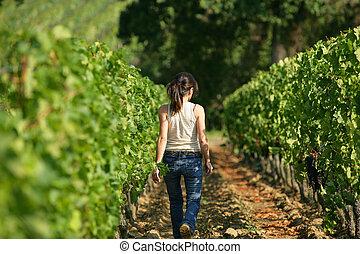 woman walking in a vineyard