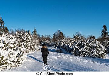 Woman walking in a winterland