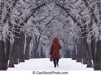 park at winter