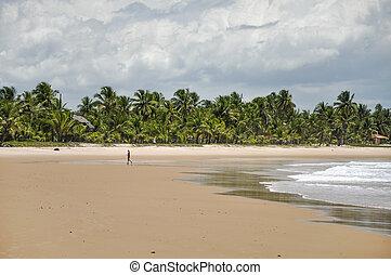 Woman walking on the beach (Taipu de Fora, Brazil)