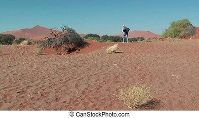 woman walking trough the dunes at sossusvlei, namibia,africa
