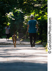 Woman walking with dog on alley in a city park