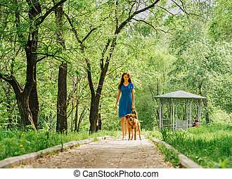 Woman walking with labrador dog in summer